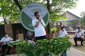 Relawan Hijau : Menuju Ketahanan Pangan Mandiri Berwawasan Lingkungan